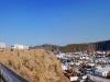 Hillhead Panorama